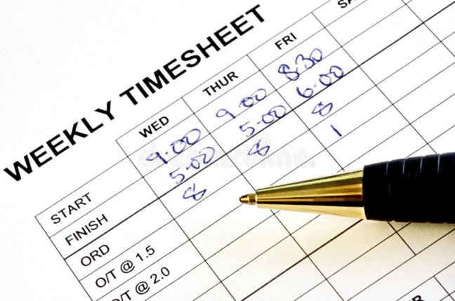 payroll timesheet professional administrative services